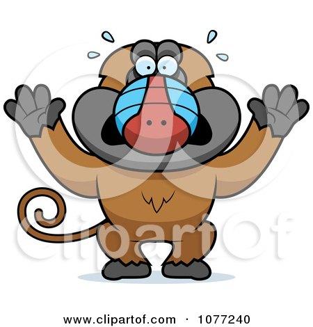 Scared cartoon chicken — Stock Vector © memoangeles #144744589  |Scared Monkey Animation
