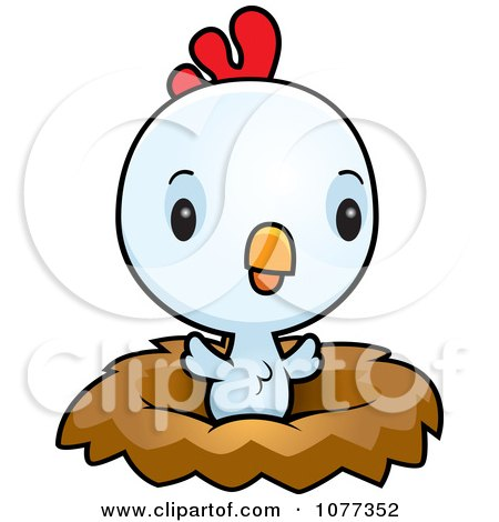 Clipart Cute Baby White Rooster Chick In A Nest - Royalty Free Vector Illustration by Cory Thoman