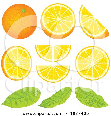 Clipart Orange Wedge Fruit Design Elements - Royalty Free Vector Illustration by Any Vector