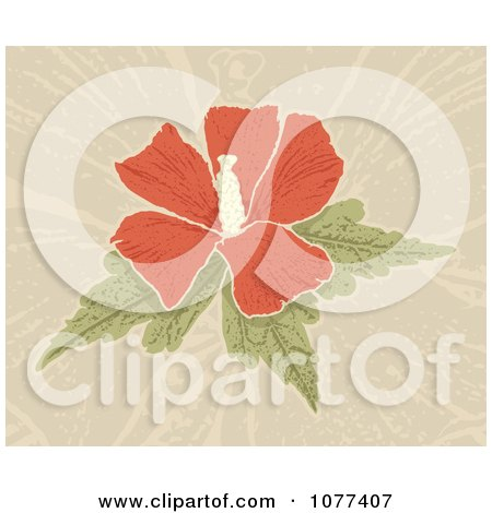 Clipart Red Hibiscus Flower Over Tan - Royalty Free Vector Illustration by Any Vector