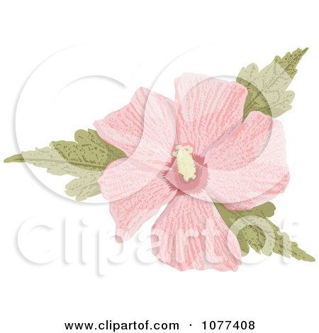 Clipart Pink Hibiscus Flower - Royalty Free Vector Illustration by Any Vector