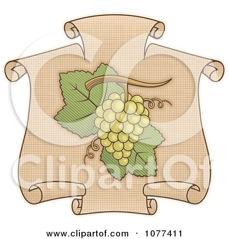 Clipart Green Grapes On A Scroll - Royalty Free Vector Illustration by Any Vector