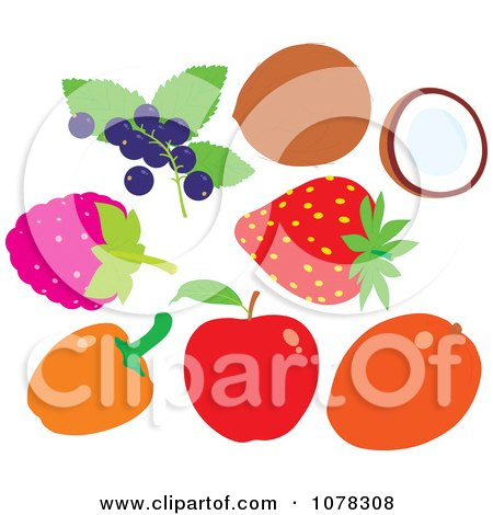 Clipart Berries And Fruit - Royalty Free Vector Illustration by Alex Bannykh