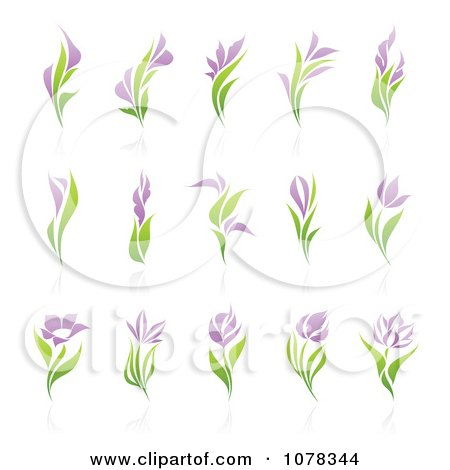 Clipart Purple And Green Floral Logos With Reflections - Royalty Free Vector Illustration by elena
