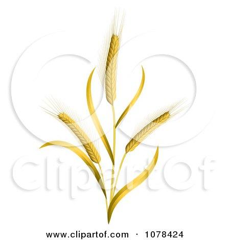 3d Ears Of Wheat Stalks Posters, Art Prints