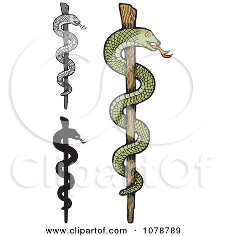 Clipart Stick Caduceuses With Snakes - Royalty Free Vector Illustration by Any Vector