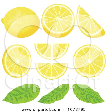 Clipart Pieces Of Lemon Wedges With Leaves - Royalty Free Vector Illustration by Any Vector