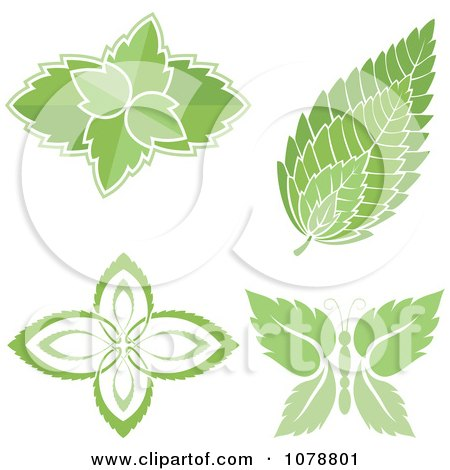 Clipart Mint Leaf Designs - Royalty Free Vector Illustration by Any Vector
