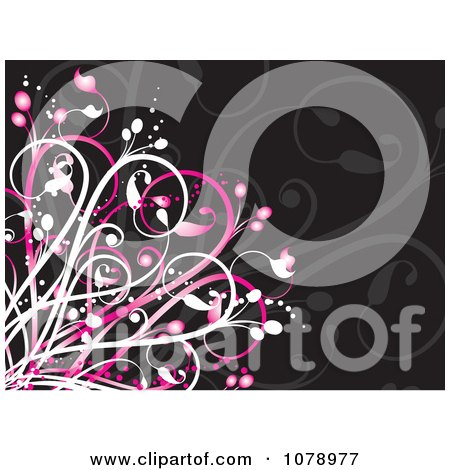 Clipart Pink And Black Floral Background - Royalty Free Vector Illustration by KJ Pargeter