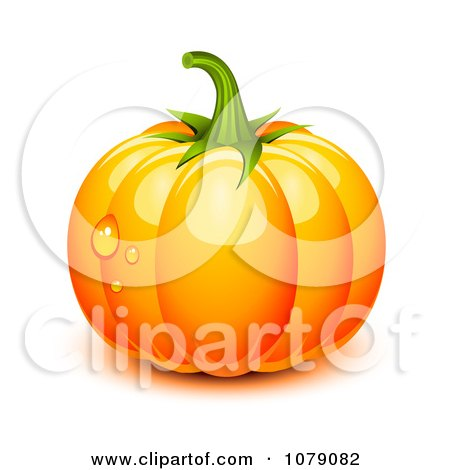 Clipart 3d Plump Orange Pumpkin With Ridges And Dew Drops - Royalty Free Vector Illustration by Oligo
