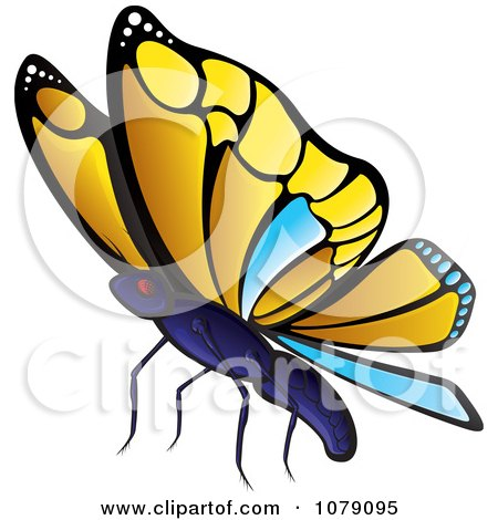 Clipart Yellow And Blue Butterfly - Royalty Free Vector Illustration by Paulo Resende