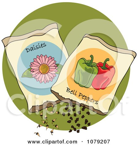 Clipart Packets Of Daisy And Bell Pepper Seeds - Royalty Free Vector Illustration by Pams Clipart