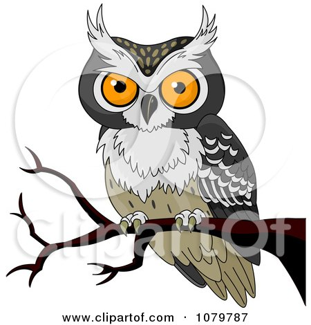 Clipart Orange Eyed Owl On A Branch - Royalty Free Vector Illustration by Pushkin