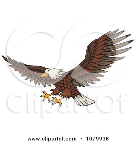 Clipart Flying Bald Eagle With Extended Talons - Royalty Free Vector Illustration by Any Vector