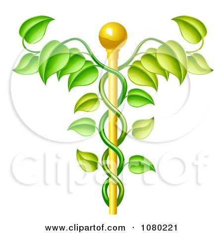 Clipart 3d Natural Vine And Gold Staff Caduceus - Royalty Free Vector Illustration by AtStockIllustration