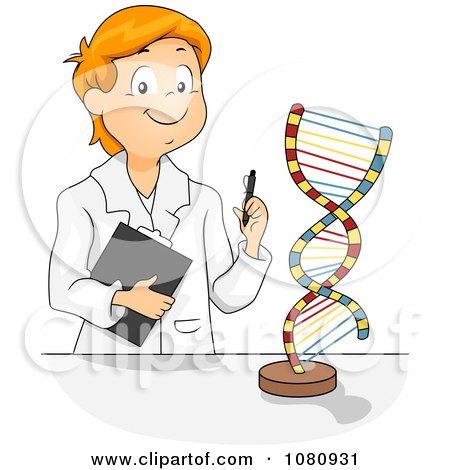Clipart Male Student Studying A DNA Model - Royalty Free Vector Illustration by BNP Design Studio