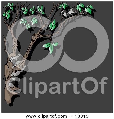 Curious Nocturnal Animals, a Raccoon and Ferret, in a Tree at Night Clipart Illustration by Leo Blanchette