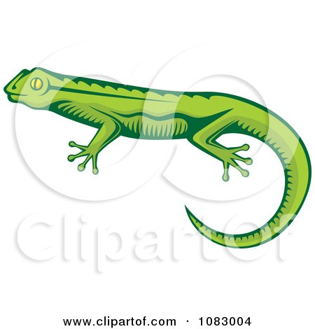 Clipart Green Lizard - Royalty Free Vector Illustration by Any Vector