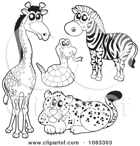 Clipart Outlined Giraffe Rattlesnake Zebra And Leopard - Royalty Free Vector Illustration by visekart