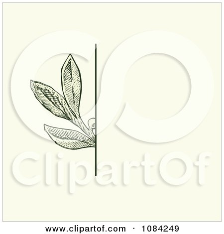 Clipart Green Leaves Invitation Background On Cream 3 - Royalty Free Vector Illustration by BestVector