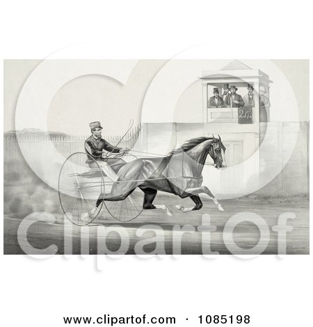 Group Of Men In A Tower, Watching A Man Race A Horse - Royalty Free Stock Illustration by JVPD