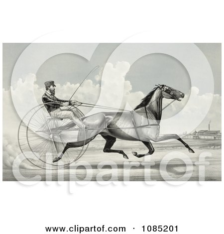 C. Champlin Driving The Trotting Horse Named George Palmer - Royalty Free Stock Illustration by JVPD