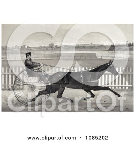 Man Racing The Famous Roan Horse, Captain Mcgowan, In His 20th Mile - Royalty Free Stock Illustration by JVPD