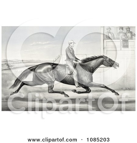 Man Riding A Horse, Billy Boyce, Racing Past Judges In Buffalo, New York, August 1st 1868 - Royalty Free Stock Illustration by JVPD