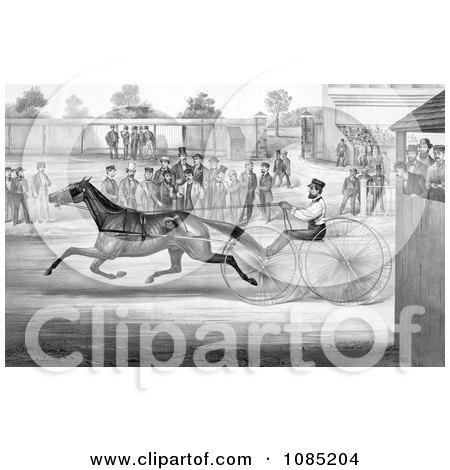 Trotting Horse, John Stewart, On His Twentieth Mile, September 22nd 1868 - Royalty Free Stock Illustration by JVPD
