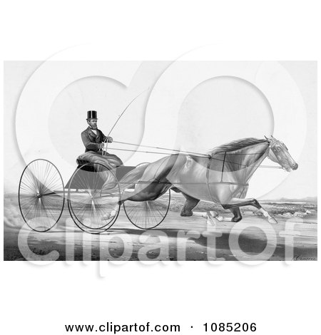 Man, Robert Bonner, In A Cart, Being Pulled By A Running Horse - Royalty Free Stock Illustration by JVPD