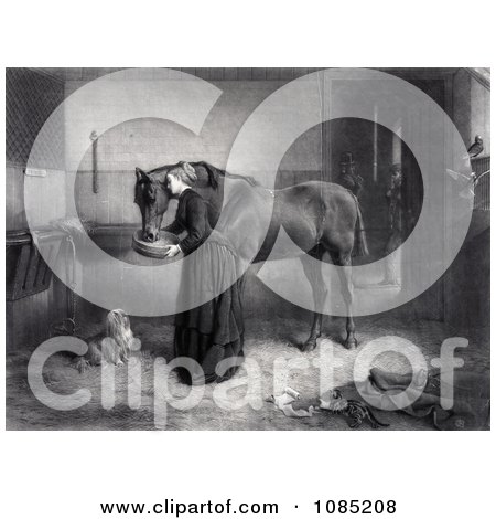 Woman Feeding And Leaning Against A Horse While A Dog Watches And A Kitten Plays, A Man Standing In The Background - Royalty Free Stock Illustration by JVPD