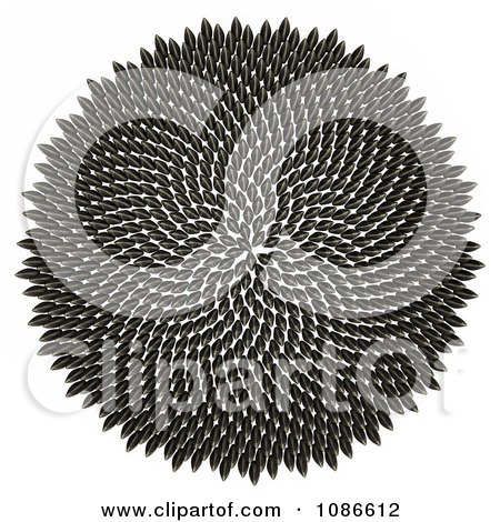 Clipart 3d Fibonacci Golden Ratio Circle Of Sunflower Seeds - Royalty Free CGI Illustration by Leo Blanchette