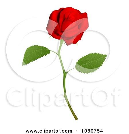 Clipart 3d Red Long Stemmed Rose - Royalty Free Vector Illustration by AtStockIllustration