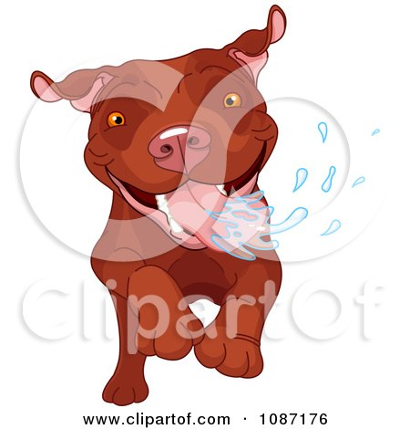 Clipart Excited Brown Pit Bull Dog Running And Drooling - Royalty Free Vector Illustration by Pushkin