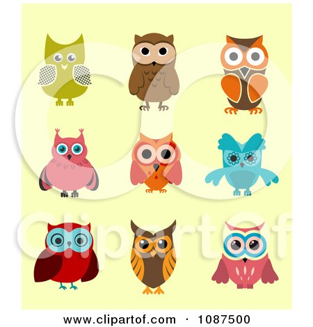 Colorful Owls Posters, Art Prints by Vector Tradition SM - Interior ...