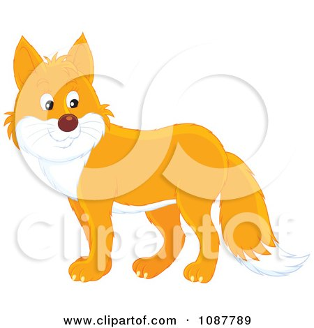 Clipart Cute Orange And White Fox - Royalty Free Vector Illustration by Alex Bannykh