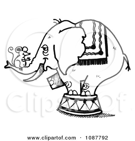 Clipart Sketched Circus Elephant With A Mouse On Its Trunk - Royalty Free Vector Illustration by LoopyLand