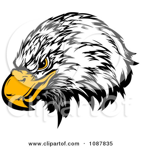 Clipart Bald Eagle Head Mascot With A Yellow Beak - Royalty Free Vector Illustration by Chromaco