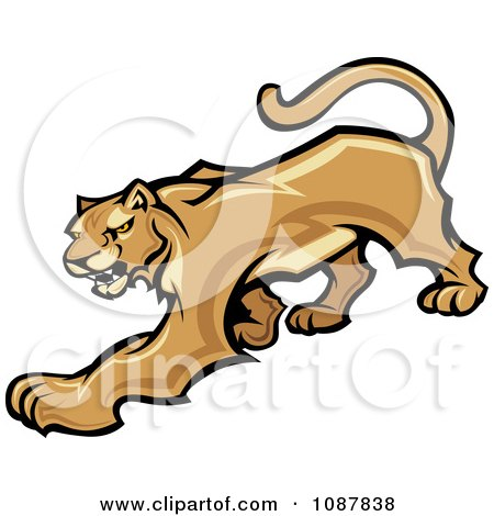Clipart Prowling Cougar Puma Wild Cat Mascot - Royalty Free Vector Illustration by Chromaco