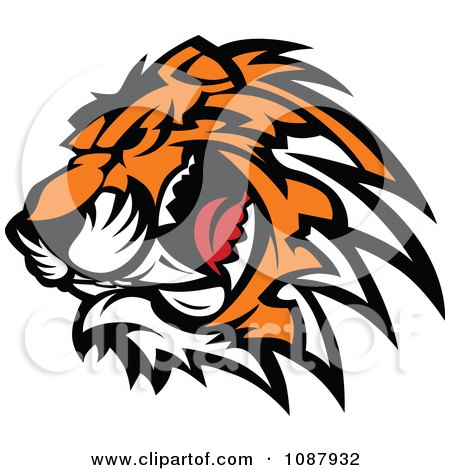 Clipart Ferocious Growling Tiger Head Mascot - Royalty Free Vector Illustration by Chromaco
