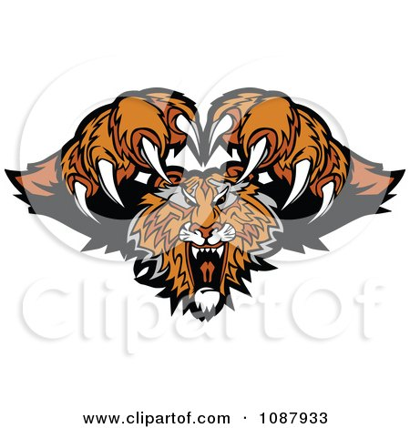 Clipart Attacking Tiger Mascot With Claws - Royalty Free Vector Illustration by Chromaco