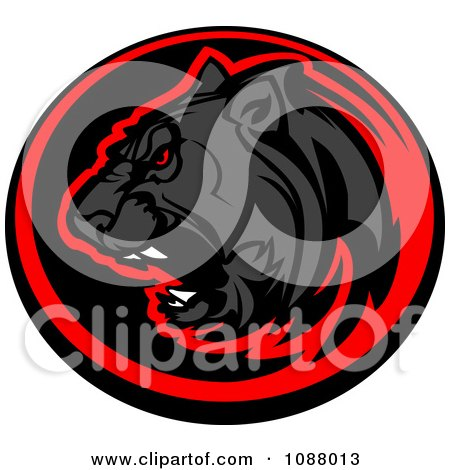 Clipart Roaring Black Panther Mascot In A Red And Black Circle - Royalty Free Vector Illustration by Chromaco