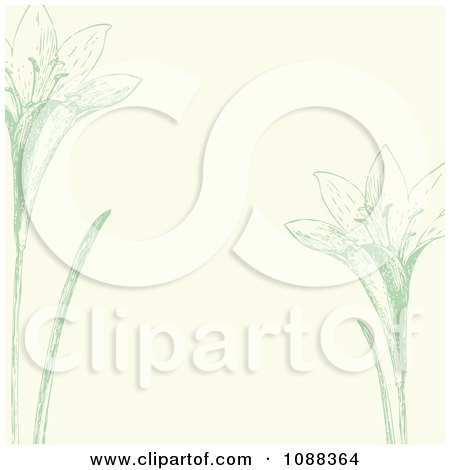 Clipart Green And Beige Iris Background - Royalty Free Vector Illustration by BestVector
