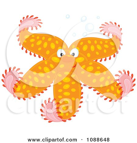 Clipart Happy Orange Starfish With Spots - Royalty Free Vector Illustration by Alex Bannykh