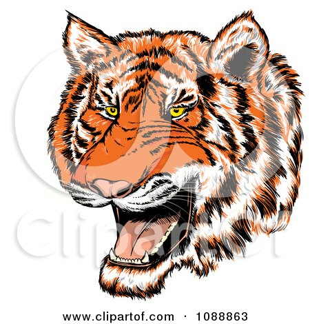 Clipart Mad Tiger Growling - Royalty Free Vector Illustration by Paulo Resende