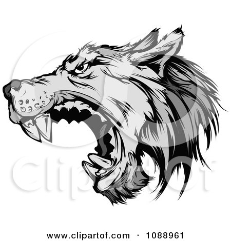 Attacking Wolf Mascot Posters, Art Prints