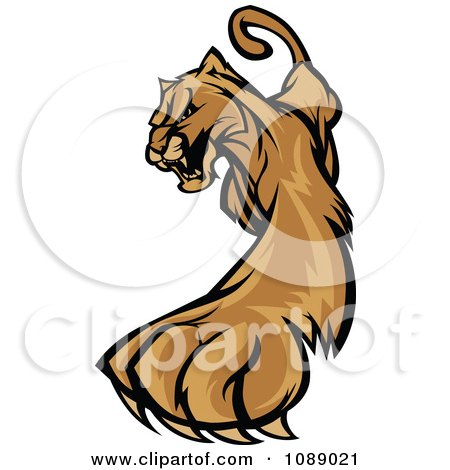 Clipart Clawing Cougar Mascot - Royalty Free Vector Illustration by Chromaco