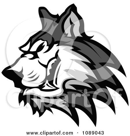 Clipart Aggressive Husky Dog Mascot - Royalty Free Vector Illustration by Chromaco