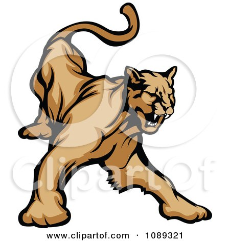Clipart Aggressive Cougar Mascot Hissing - Royalty Free Vector Illustration by Chromaco