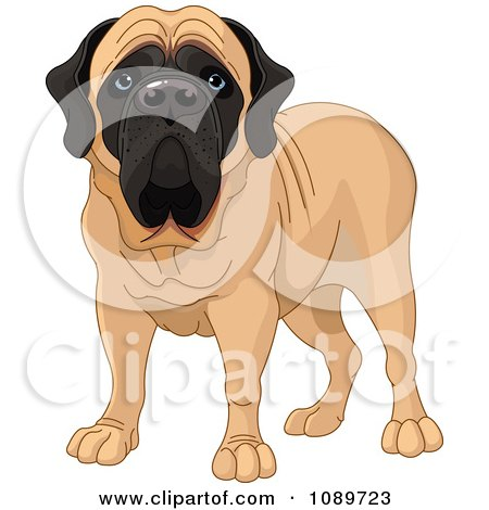 Clipart Cute English Mastiff Dog Standing - Royalty Free Vector Illustration by Pushkin